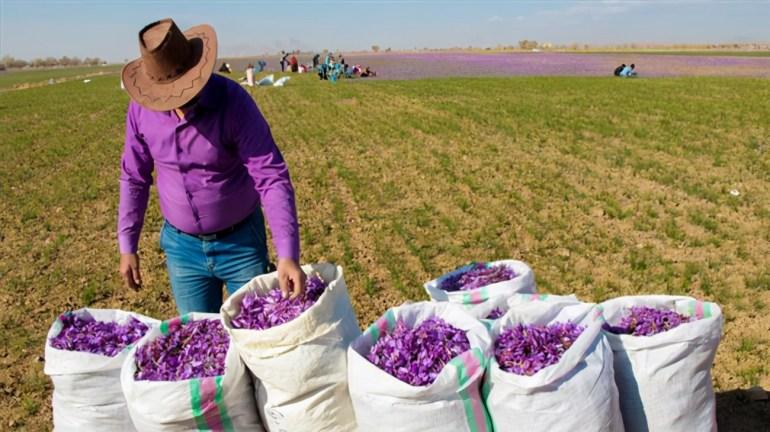 印度陆军新武器到货,立即部署拉达克前线,中印边境局势再度紧张