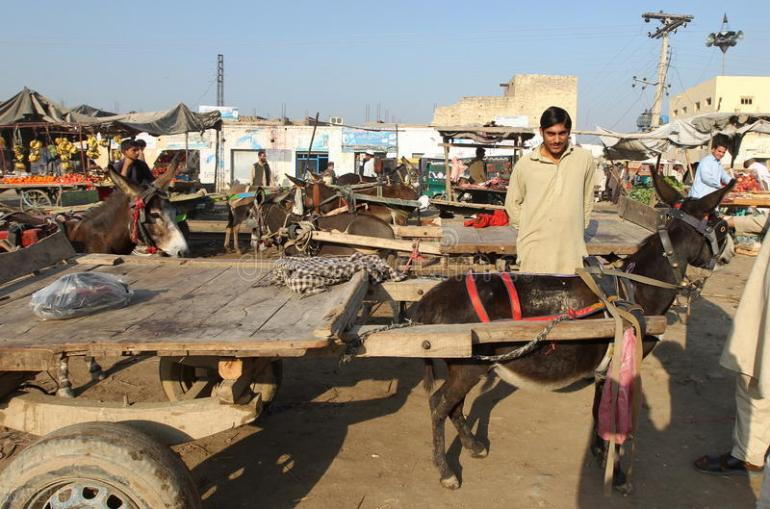 纽约暴雨导致多个地铁站被淹,官方回应:水往低处流,我们做得很好