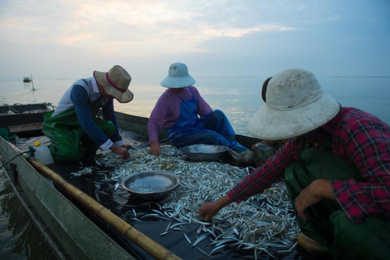近十萬台灣同胞來大陸接種疫苗,媒體整理台灣涉疫情十大謊言