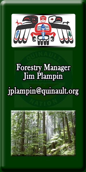 Quinault Division of Natural Resources Forestry Manager Jim Plampin