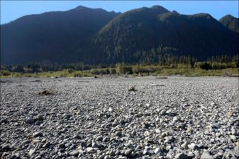 Quinault Road Management Program | Quinault Forestry Department