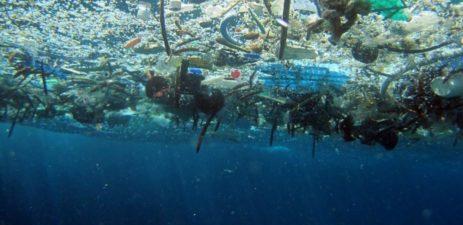 Marine Debris | Quinault Marine Resources Program