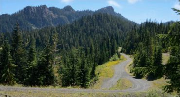 Quinault Inventory Management Program | Quinault Forestry Department