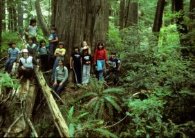 Quinault Tribal Days Project