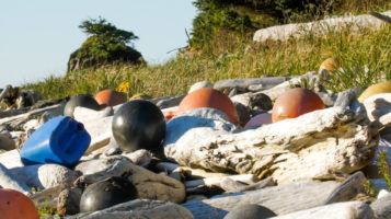 Quinault Marine Resources Program | Quinault Division of Natural Resources