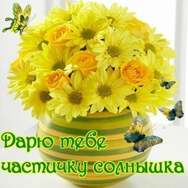С Добрым утром... с Добрым утром и с Хорошим днем ...