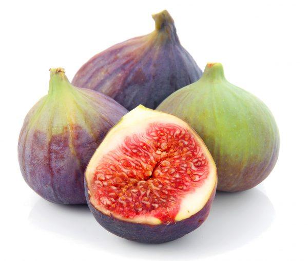 Figs-green-purple-600x507 (1)