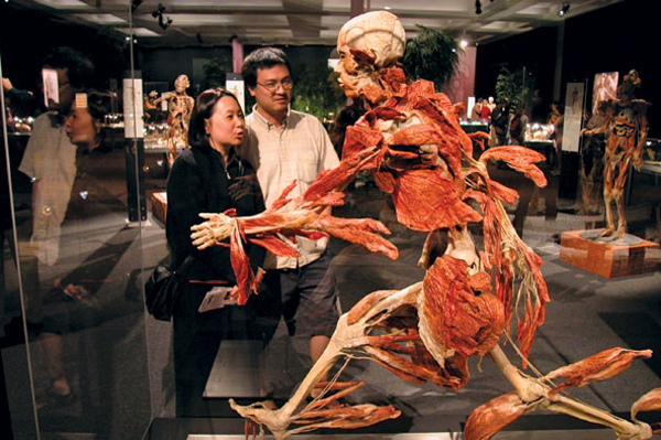 """One of the most iconic Body Worlds pieces is the """"running man."""""""