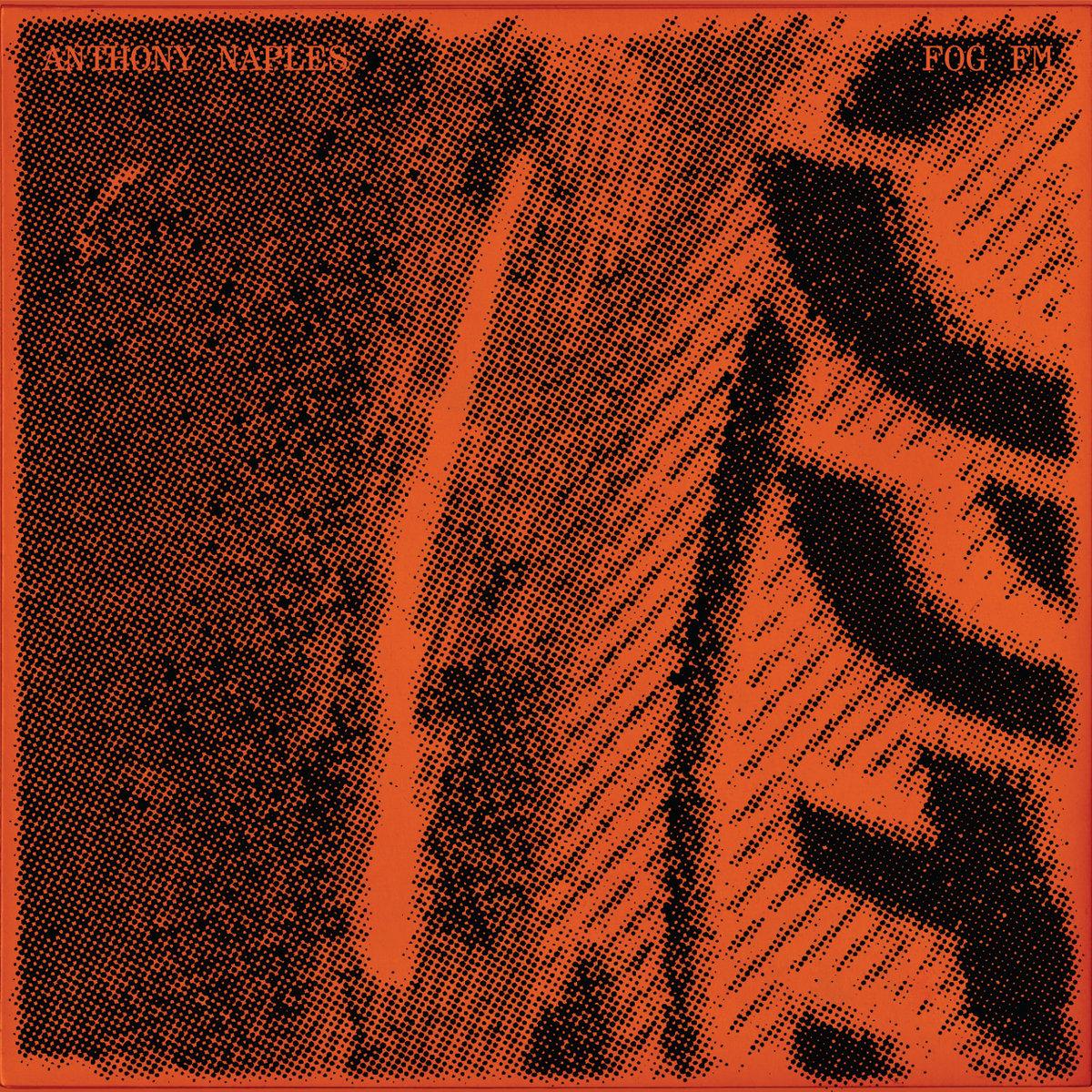 Anthony Naples – Fog FM