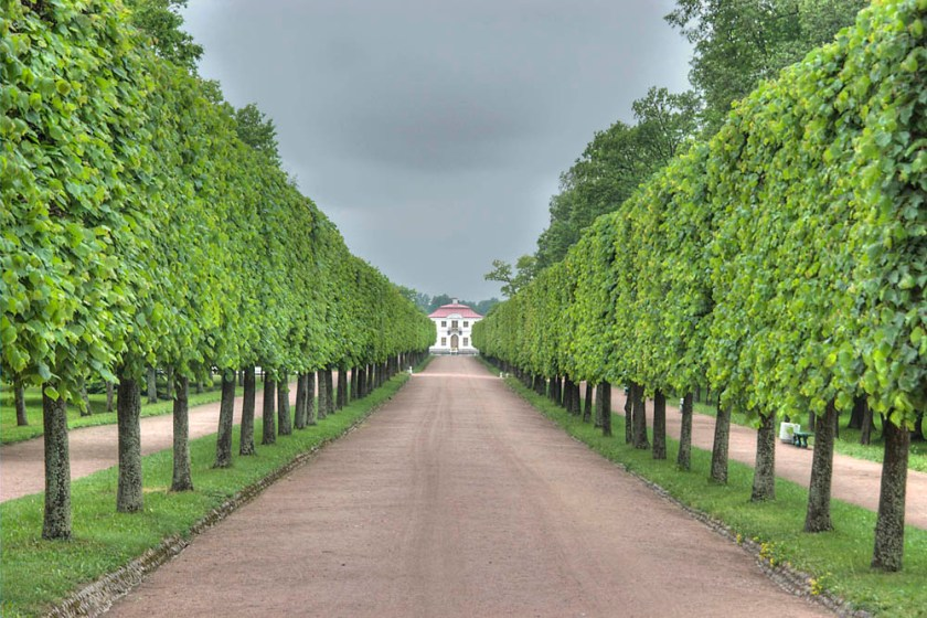 saint_petersburg_peterhof-alley_towards_marli_palace_peterhof.jpg