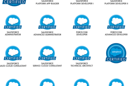 salesforce sales cloud certification » Free Professional Resume ...