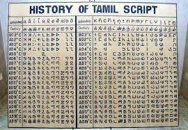 Is Tamil the mother of other South Indian languages such as Telugu     If we conclude that origin of Tamil as X BC this year then next year Indian  gov excavates another archaeological site to surprise us and move the  origin of