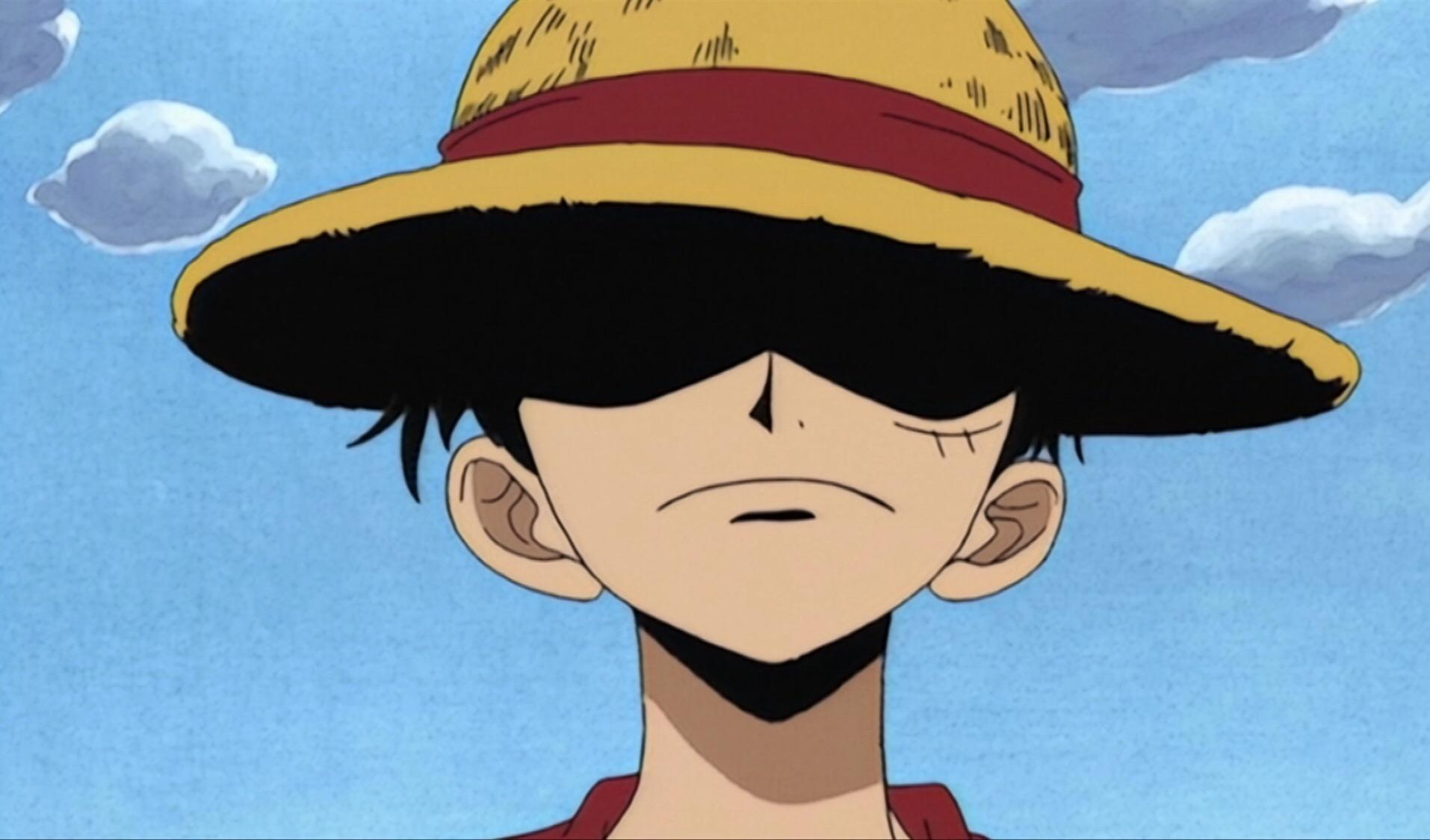 It has been serialized in shueisha's weekly shōnen How Old Is Monkey D Luffy Quora