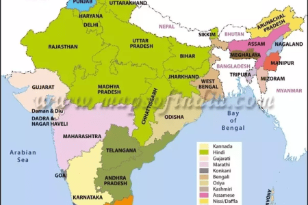 Map of languages in india map of india map of the world map of the the amazing diversity of languages around the world in one map vox human language families map world map a map of the world with country name labeled world gumiabroncs Gallery