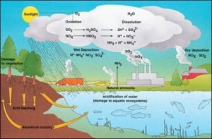 What is acid rain?  Quora