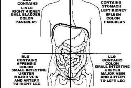 Left hand side stomach pain full hd maps locations another world abdominal pain on the left side during pregnancy livestrong com abdominal pain on the left side during pregnancy anatomy of abdomen right side left pain ccuart Image collections