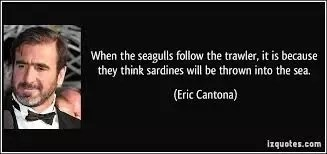 In a 2012 interview francis explained that he had agreed to take cantona. What Exactly Did Eric Cantona Mean In His Seagull Analogy Following His Kung Fu Kick Quora