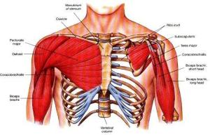 Why is the chest area near my armpit hurt the next day