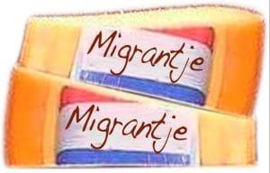 Migrantje Menschenrechts und migrations kaese