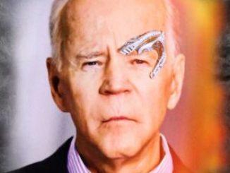 Wahlbetrug: sagt Biden erstmals die Wahrheit?