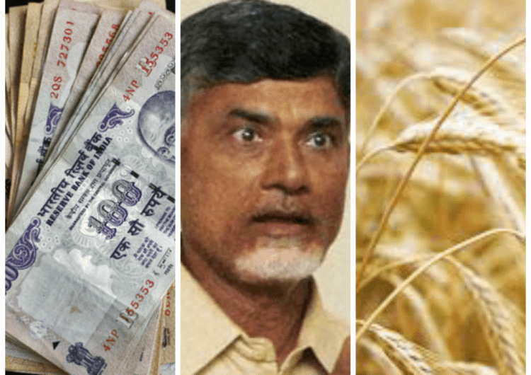 Loan Waivers and the Indebted State: Should AP waive its farmer's debt?