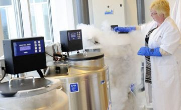 """An Analysis Of Apple And Facebook's """"Freezing Eggs"""" Scheme"""