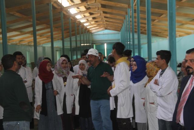 كلية الطب البيطري /جامعة القادسية تقوم بزيارة علمية إلى محطة أبقار تاج النهرين لإنتاج الحليب في الديوانية