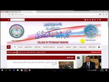 طريقة الدخول الى موقع نتائج كلية الطب البيطري جامعة القادسية والحصول على النتيجة