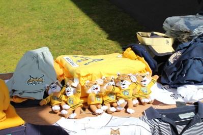 The Bobcats are ready!
