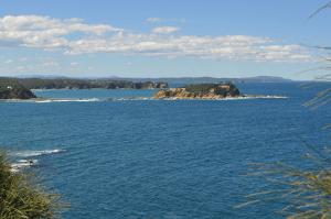 Jimmies Island