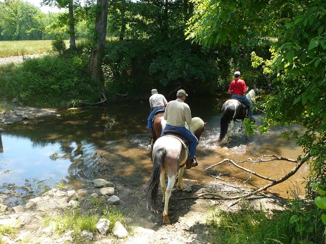 Saddle Up for St  Jude Trail Ride July 17-18 |