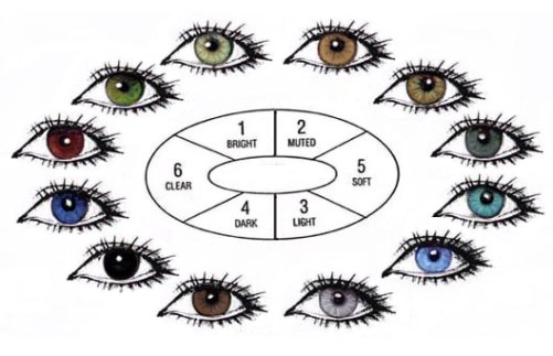 human-eye-color-chart