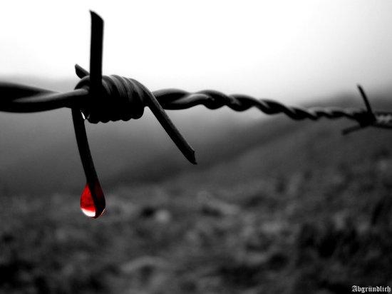 raining_blood_by_abgrundlich-d4983uk
