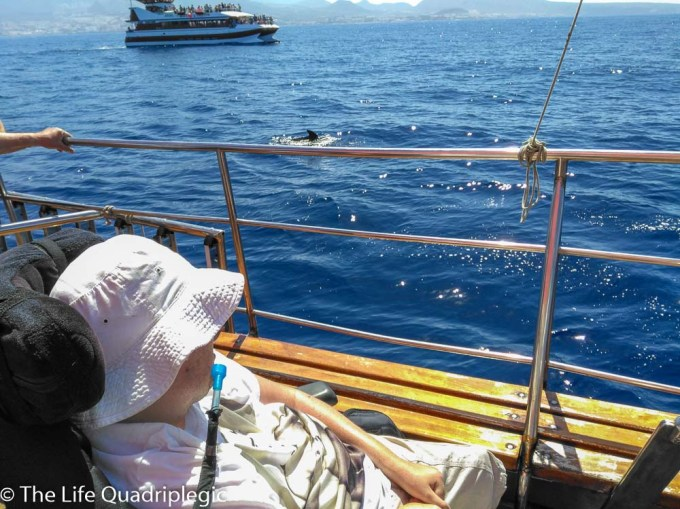 A male wheelchair user wearing a white hat is looking after the side of the boat at the ocean with a dolphin surfacing in the middle distance
