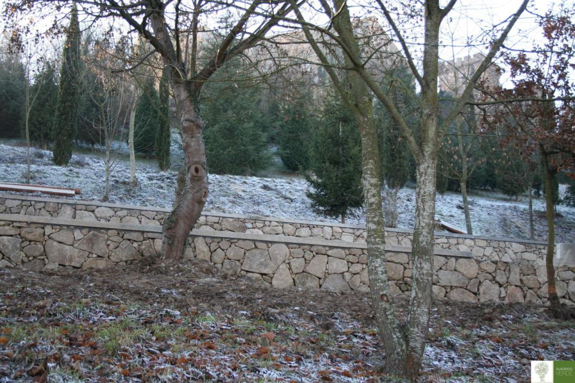 Parque Zapardiel, Monforte de Lemos