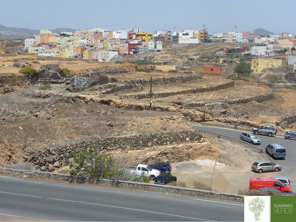 terrazas cultivo abandonadas-A