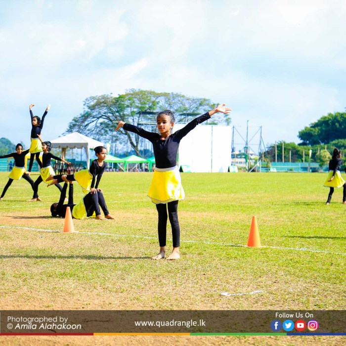 HCK_PRIMARY_SPORTSMEET_2019_OPENNING (178)