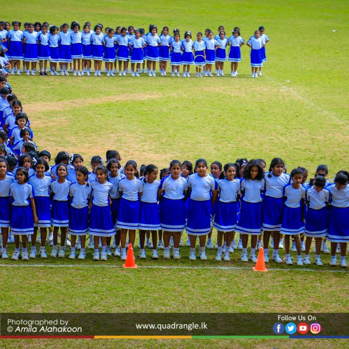 HCK_PRIMARY_SPORTSMEET_2019_DRILLDISPAY (102)