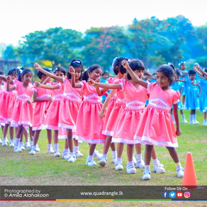HCK_PRIMARY_SPORTSMEET_2019_DRILLDISPAY (11)