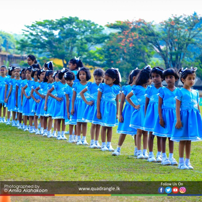 HCK_PRIMARY_SPORTSMEET_2019_DRILLDISPAY (119)