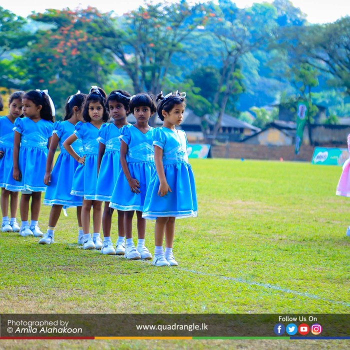 HCK_PRIMARY_SPORTSMEET_2019_DRILLDISPAY (120)
