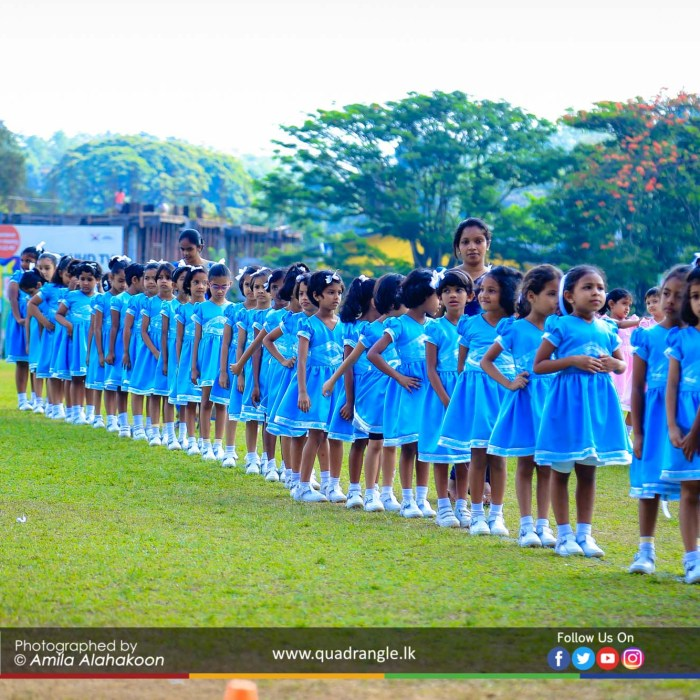 HCK_PRIMARY_SPORTSMEET_2019_DRILLDISPAY (124)