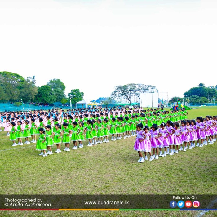 HCK_PRIMARY_SPORTSMEET_2019_DRILLDISPAY (133)