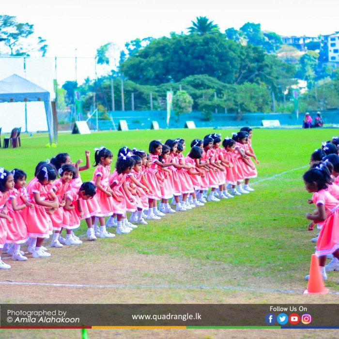 HCK_PRIMARY_SPORTSMEET_2019_DRILLDISPAY (14)