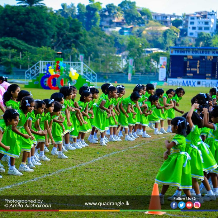 HCK_PRIMARY_SPORTSMEET_2019_DRILLDISPAY (141)