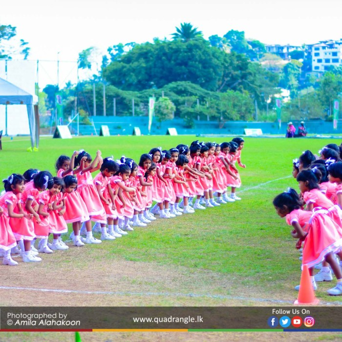 HCK_PRIMARY_SPORTSMEET_2019_DRILLDISPAY (15)