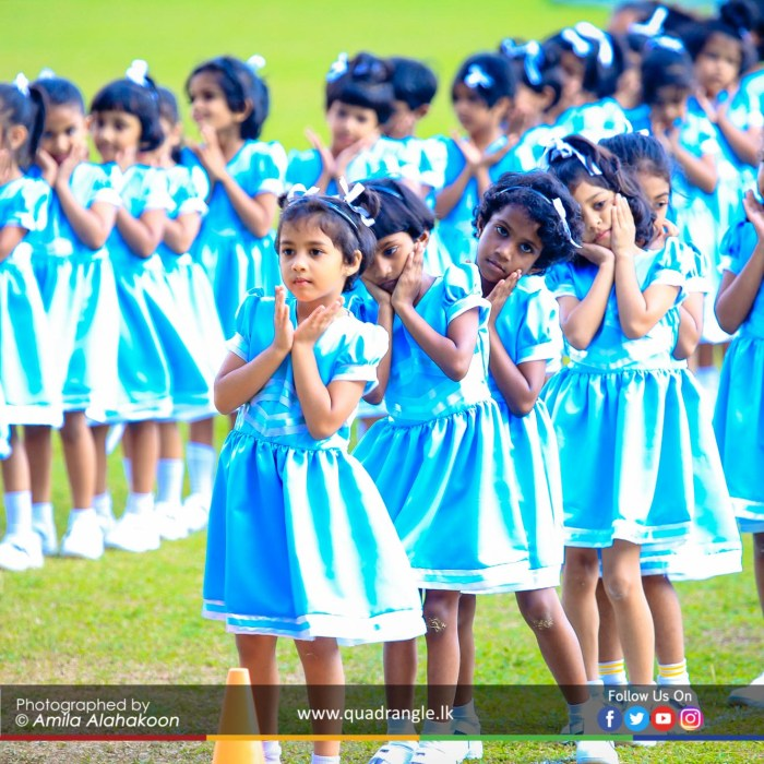 HCK_PRIMARY_SPORTSMEET_2019_DRILLDISPAY (161)