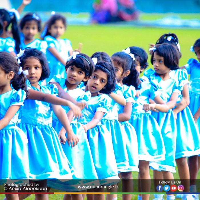 HCK_PRIMARY_SPORTSMEET_2019_DRILLDISPAY (163)