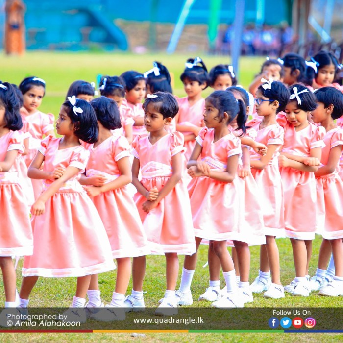 HCK_PRIMARY_SPORTSMEET_2019_DRILLDISPAY (165)