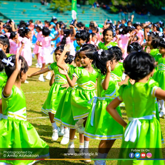 HCK_PRIMARY_SPORTSMEET_2019_DRILLDISPAY (175)